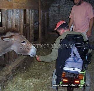 Séjour à la ferme pour une personne handicapée en fauteuil