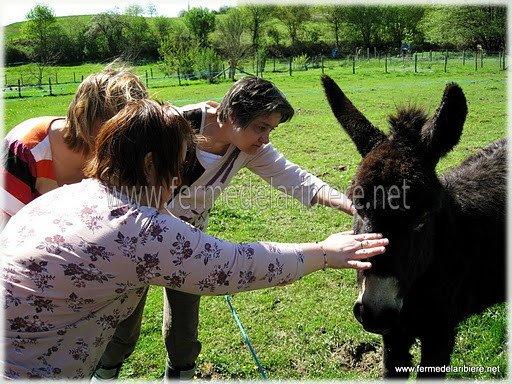 Découverte des animaux de la ferme pédagogique pour des personnes handicapées